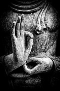 Buddha Photo Metal Prints - Buddha Hand Mudra Metal Print by Tim Gainey