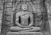 All - Buddha by Hitendra SINKAR