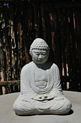 Self-knowledge Metal Prints - Buddha in the Round Metal Print by Heather Kirk