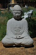 Self-knowledge Metal Prints - Buddha on the Rock Metal Print by Heather Kirk