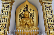 Buddha Statue Prints - Buddha Statue at the World Peace Pagoda Pokhara Print by Robert Preston