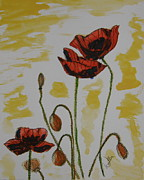 Red Poppies Drawings - Budding Poppies by Marcia Weller-Wenbert
