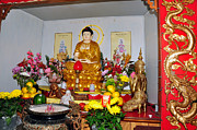 Ascension Parish Prints - Buddist Alter Print by Helen Haw