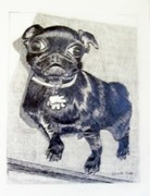 Terriers Drawings Prints - Buddy Print by Jamie Frier