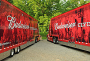 Budweiser Photos - Budweiser Clydesdale Trucks by Jt PhotoDesign