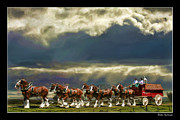 Pictures Of Horses Framed Prints - Budweiser Clydesdales Paint 1 Framed Print by Blake Richards