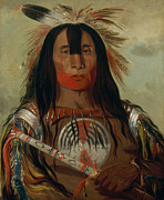 American Indian Digital Art - Buffalo Bulls Back Fat by George Catlin