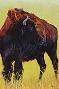 Yellowstone Painting Originals - Buffalo Girl by Patricia A Griffin