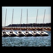 Mark Weber - Buffalo sailboats in a...