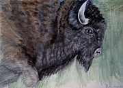American Bison Originals - Buffalo-Sully Wildlife Preserve by Linda Waidelich