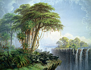 Tall Trees Prints - Buffalos Driven to the Edge of the Chasm opposite Garden Island Victoria Falls Print by Thomas Baines