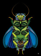 Flying Bugs Framed Prints - Bug-a-boo Lrg Framed Print by Greg Gwynne