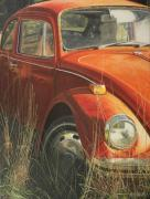 Volkswagon Posters - Bug in the Grass Poster by Nancy Teague