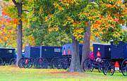 Carriages Posters - Buggies in Autumn Poster by Tina M Wenger