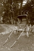 Amish Photographs Posters - Buggy Poster by Dwight Cook