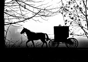 Horse And Buggy Posters - Buggy on a Foggy Day Poster by David Arment