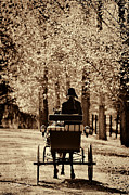 Horse And Cart Digital Art Metal Prints - Buggy Ride Metal Print by Joan Davis