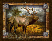 Bruce Painting Framed Prints - Bugling Elk Framed Print by Bruce Miller