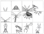 Bugs Drawings - Bugs by Linda Baker-Cimini