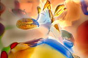 Illuminated Glass Art - Bugs on Parade by Omaste Witkowski