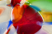 Macro Photos Glass Art - Bugsy by Omaste Witkowski