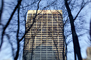 Cities Metal Prints - Building through trees Metal Print by Tony Cordoza