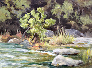 Bull Creek Prints - Bull Creek in the Fall Print by Melanie Lewis