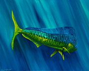 Fish Underwater Paintings - Bull Dolphin by Steve Ozment