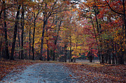 Manassas National Battlefield Park Photos - Bull Run Autumn by Armand Cabrera