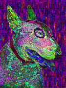 Dogs Digital Art Metal Prints - Bull Terrier Dog Pop Art - 20130121v1 Metal Print by Wingsdomain Art and Photography