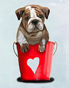 Bulldog Digital Art Posters - Bulldog Buckets of Love Poster by Kelly McLaughlan