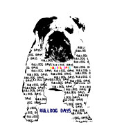 Drawings Of Dogs Framed Prints - Bulldog Days Framed Print by Brian Buckley