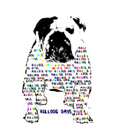 Drawings Of Dogs Framed Prints - Bulldog Days Colour Framed Print by Brian Buckley
