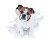 Bullie Mixed Media Prints - Bulldog In The Snow Print by Tori Beveridge