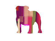 Colorful Art. Prints - Bulldog Print by Irina  March