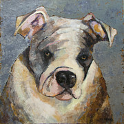 Bulldog Paintings - Bulldog by Mary Medrano