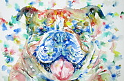 English Bulldog Paintings - BULLDOG - watercolor portrait by Fabrizio Cassetta