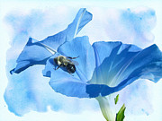 Mother Nature Photos - Bumblebee and Blue Morning Glory by Mother Nature