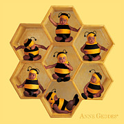 Nursery Metal Prints - Bumblebees Metal Print by Anne Geddes