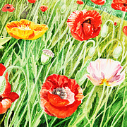 Watercolor Card Prints - Bunch Of Poppies I Print by Irina Sztukowski