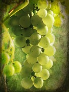 Grape Leaf Digital Art Prints - Bunch of yellow grapes Print by Barbara Orenya