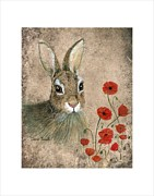 Dana Spring Parish - Bunny and Poppies