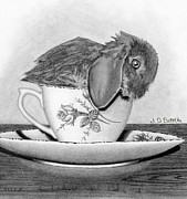 Ceramic Drawings - Bunny In A Tea Cup by Sarah Batalka