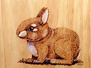 Cute Pyrography Prints - Bunny Print by Ron Haist