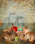 Lettuce Digital Art Framed Prints - Bunny Snack Time Framed Print by Terry Fleckney