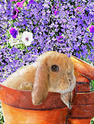 Rabbit Digital Art Metal Prints - Bunny With Flowerpots Metal Print by Jane Schnetlage