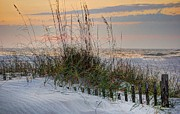 Beach Fence Digital Art Posters - Buried Fence and Sea Oats Sunrise Poster by Michael Thomas