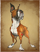 Boxer  Drawings Prints - Burly Boxer Print by Canine Caricatures By John LaFree