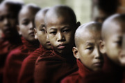 Spirituality Framed Prints - Burma Monks 2 Framed Print by David Longstreath