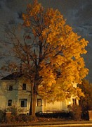 Photos Of Autumn Art - Burning Leaves at Night by Guy Ricketts